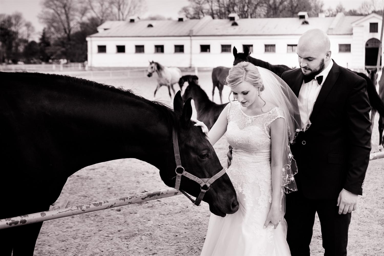 Zdjęcia ślubne - 4