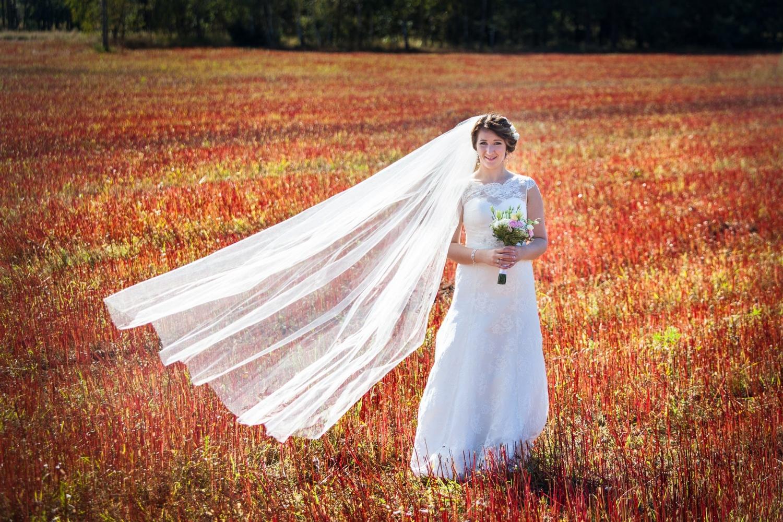 Zdjęcia ślubne - 60