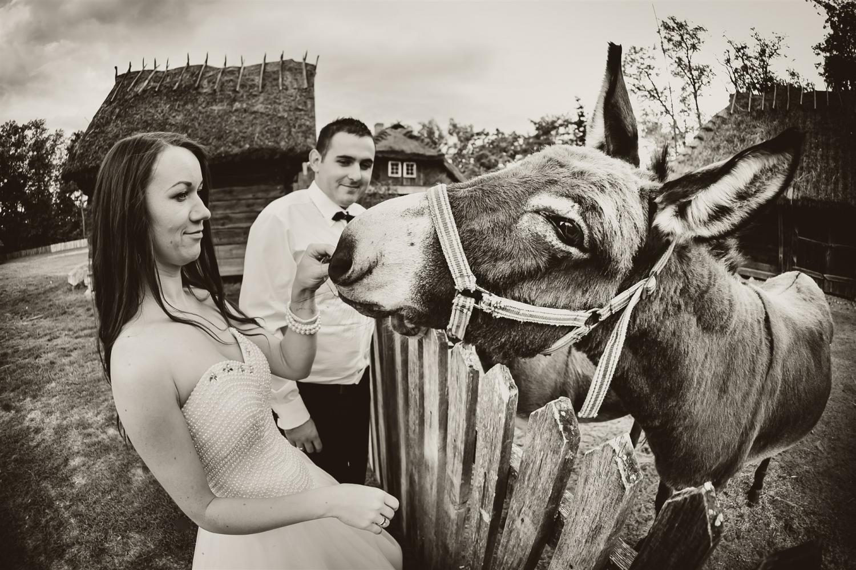 Zdjęcia ślubne - 26