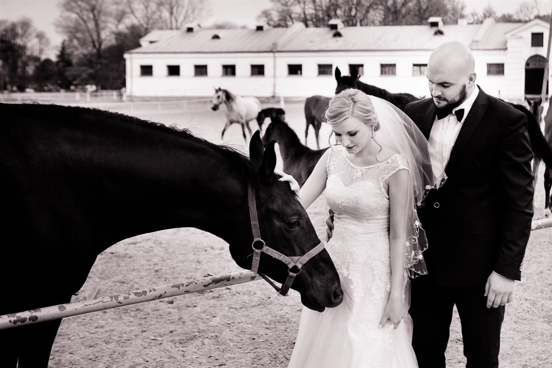 Zdjęcia ślubne - 20